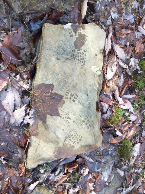 "I call this ""Stepping Stone with Leaf and Boot Print."""