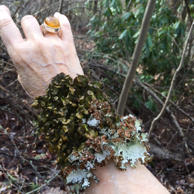 I'm likin' this lichen bracelet.